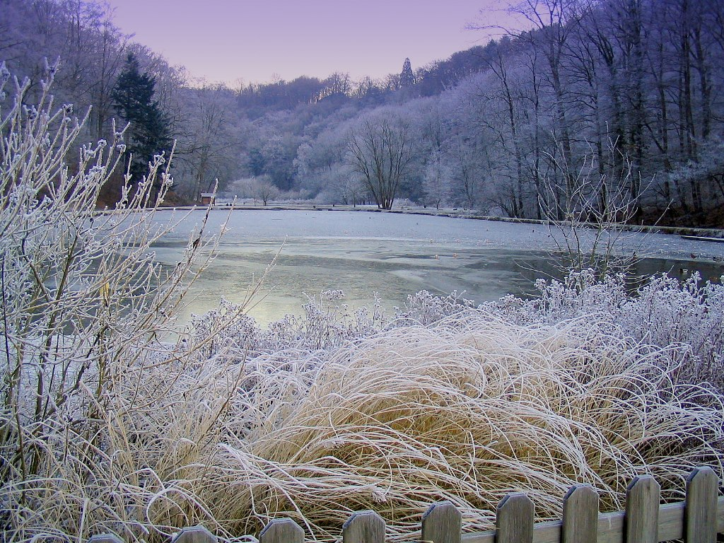 paysages givre et neige