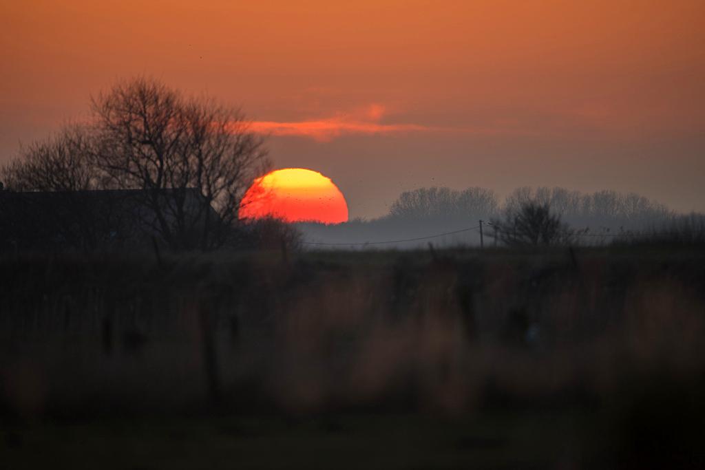 coucher de soleil D81_1232