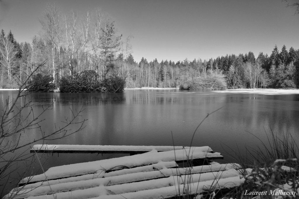 le vieux ponton sous la neige DSC_5776