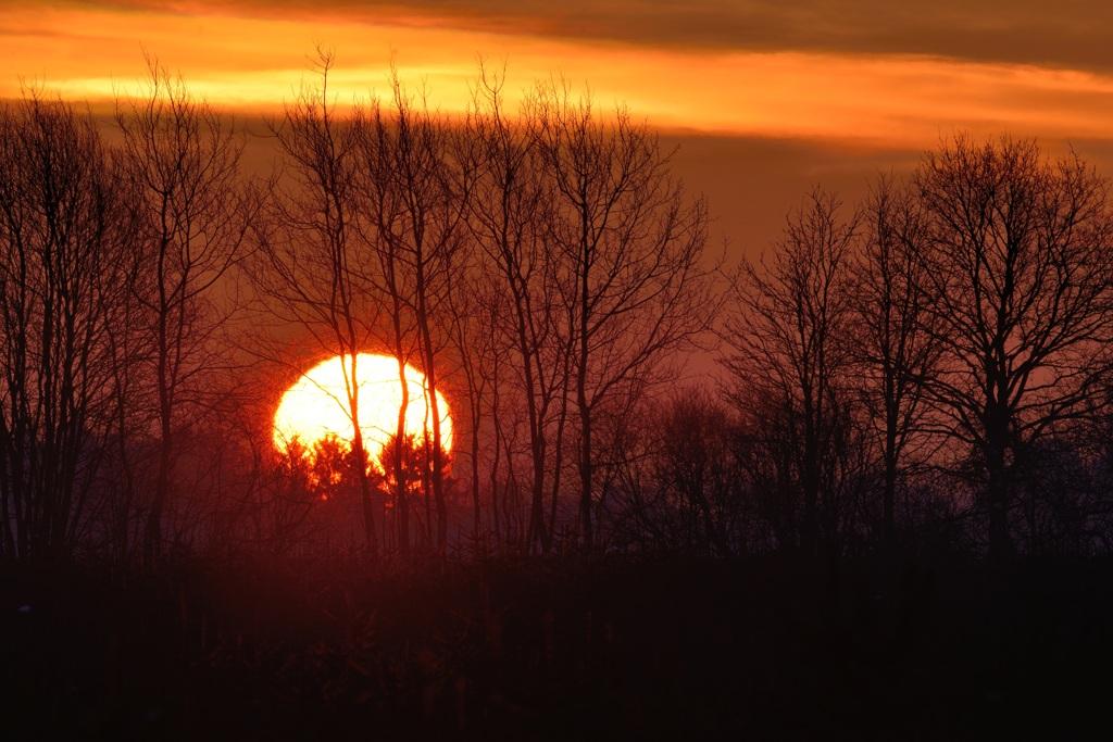 lever de soleil hivernal DSC_5913