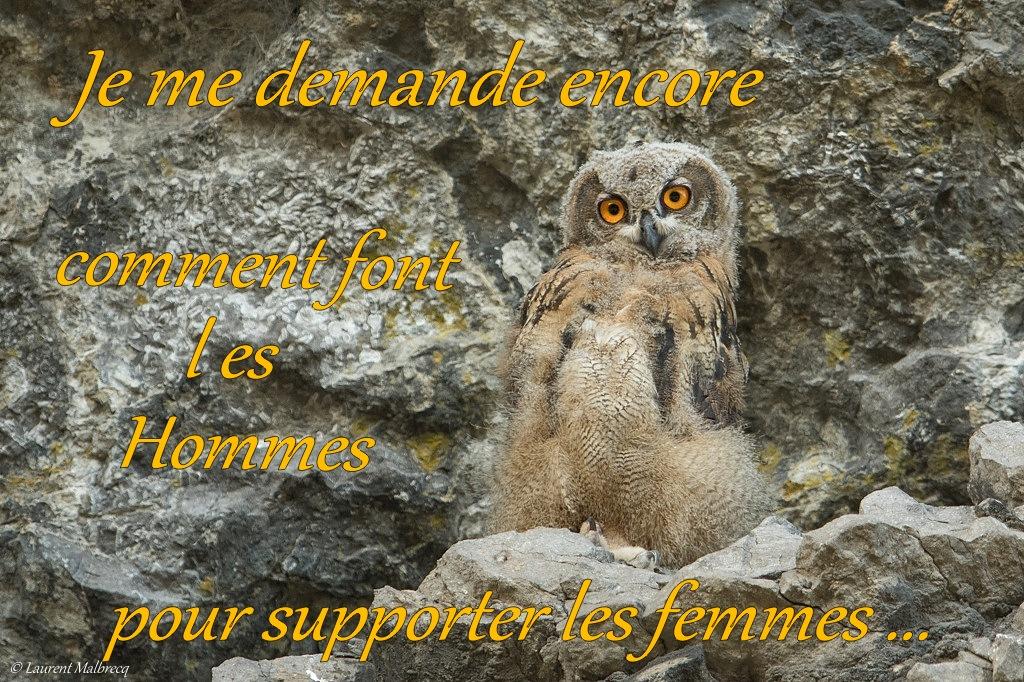 supporter les femmes ... DX5_3857 - Copie
